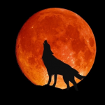 Core Work 1.9.20 — Wolf Moon